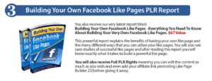 Build your own Facebook Like Pages